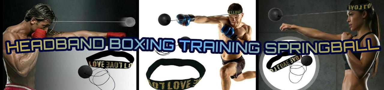 Boxing Springball Banner